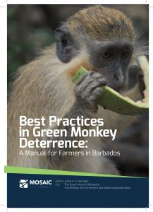 Best Practices in Green Monkey Deterrence